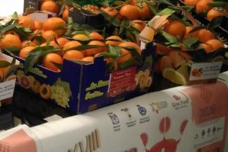 Pronta a colorarsi di arancione per la sagra del mandarino