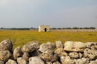Cinque domeniche dedicate alle passeggiate nelle terre del Primitivo