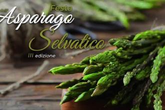 Festa dell'asparago per conoscere il borgo sui Monti Dauni