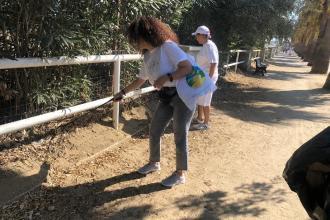 Volontari ripuliscono dai rifiuti abbandonati la litoranea di Ponente