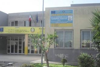 Il Comune donerà un albero ad ogni scuola della città di Taranto