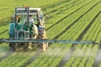 Prorogati i termini per le risorse Psr in agricoltura