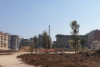 I giovani di Confindustria donano alberi e piante per il Parco Rossani
