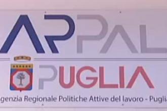 La Regione ha bandito concorsi per assumere diplomati e laureati