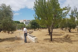 Una parte dell'Orto botanico riapre al pubblico
