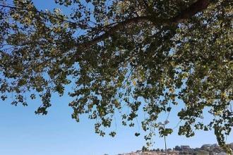 Tre sindaci della Puglia nel coordinamento di CittaSlow