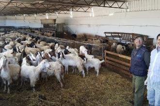 Ottimi risultati con il Mobilab nelle aziende lattiero-casearie