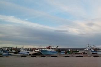 Pesca e acquacultura hanno una legge mirata in Puglia