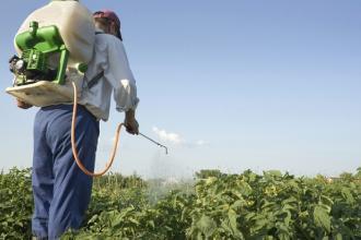 Il primo cittadino vieta l'uso di pesticidi per garantire la salute