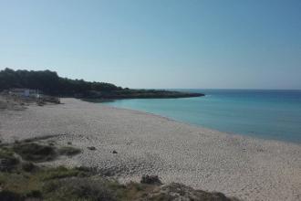 Cittadini volontari si danno appuntamento per ripulire due spiagge