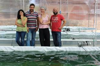 Pasta, birra e miele alla spirulina: i cibi del futuro made in Puglia