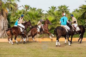 Concluso il torneo di polo promosso dall'Horse Club Piana degli Ulivi