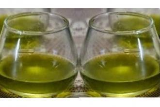 Lezioni su come riconoscere l'olio evo