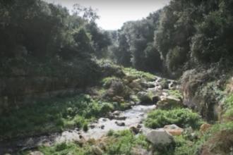 Brevi video per conoscere la Riserva naturale regionale di Conversano