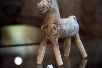 Riapre il Museo del Territorio 'Ugo Granafei'