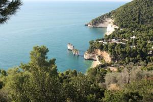 Il bonus vacanze ha portato nuovi turisti sul Gargano