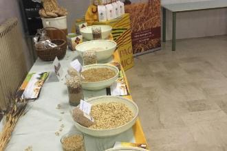 Riconoscibili i prodotti 'made in Puglia' con decreto Semplificazioni