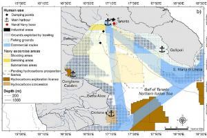 Mappa internazionale indica le zone del Golfo attraversate da delfini